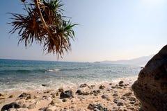 Vagues et roches d'île de Capones Photos libres de droits