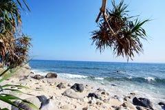 Vagues et roches d'île de Capones Images libres de droits