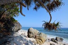 Vagues et roches d'île de Capones Image libre de droits