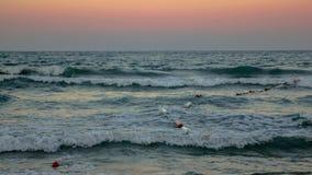 Vagues fortes sur Sunny Beach, Bulgarie Photo libre de droits