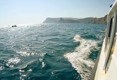 Vagues sur le paysage marin dans la lumière du soleil Images libres de droits