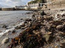 Vagues sur le rivage Photo stock