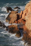 Vagues sur les roches Photographie stock