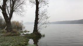 Vagues sur un lac pendant l'automne froid en neigeant banque de vidéos