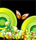 Vai o cartão verde do ambiente Imagem de Stock Royalty Free