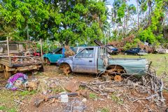 Uvea, Wallis and Futuna. Automotive graveyard, car cemetery yard, abandoned car junkyard under palm trees on a remote island. royalty free stock image