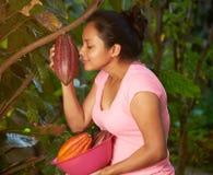 Vaina fresca del cacao del olor de la mujer joven fotos de archivo