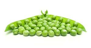 Vaina y gérmenes de guisante verde Foto de archivo libre de regalías