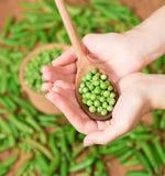 Vainas de guisante verde Imagen de archivo