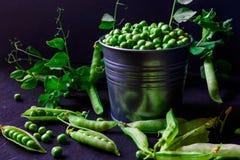 Vainas de guisante verde en una lata imagen de archivo libre de regalías