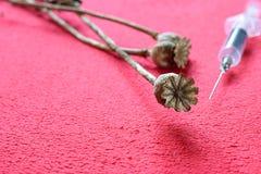 Vainas de la semilla de amapola y una jeringuilla disponible fotografía de archivo
