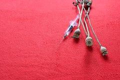 Vainas de la semilla de amapola y una jeringuilla disponible imágenes de archivo libres de regalías