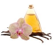 Vainas, flor y botella de la vainilla Fotografía de archivo libre de regalías
