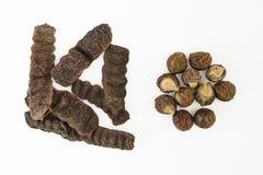 Vainas secadas y Soapnuts de Shikakai Foto de archivo