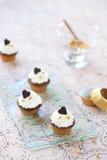 Vainilla Mini Cupcakes del chocolate imágenes de archivo libres de regalías