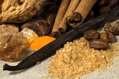 Vainilla, palillos de cinamomo y otras especias e ingredientes foto de archivo