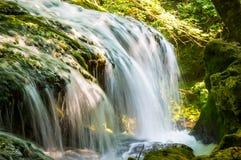 Vaioaga vattenfall i den Cheile Nerei-Beușnița nationalparken Arkivfoton