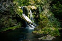 Vaioaga vattenfall, Rumänien arkivbilder