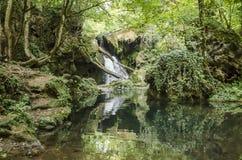 Vaioaga-Wasserfall stockbild