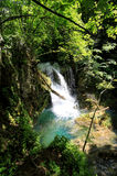 Vaioaga waterfall, Romania. La Vaioaga waterfall is situated deep in the Forest of Anina Mountains and is one of the biggest waterfall around the Nera gorges Stock Images