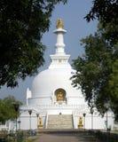Vaishali виска мира Будды Стоковое Изображение RF