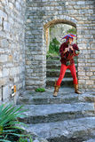 Vaison losu angeles Romaine, Provence Fotografia Royalty Free
