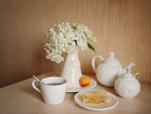 Vaisselle blanche photos stock