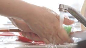 Vaisselle de cuisine de nettoyage de femme sous le courant de l'eau banque de vidéos