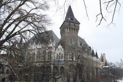 Vajdahunyad slott Royaltyfri Fotografi