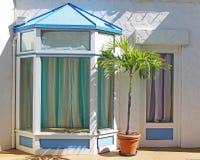 Vakant skyltfönster med palmträdet Royaltyfria Bilder