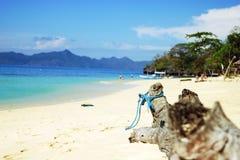 Vakantie Royalty-vrije Stock Foto