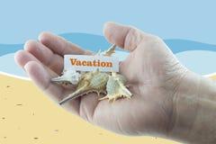 Vakantie Royalty-vrije Stock Fotografie