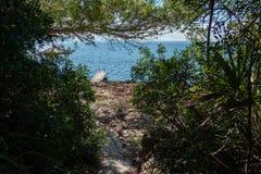 Vakantie op het Eiland Mallorca in Spanje Royalty-vrije Stock Afbeelding
