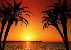 Vakantie in Paradijs vector illustratie