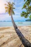 Vakantie Tropisch zandig strand met palm en turkooise overzees stock afbeeldingen