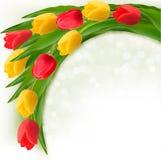 Vakantieachtergrond met boeket van kleurrijke bloemen Royalty-vrije Stock Afbeelding