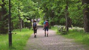 Vakantievakantie Wandeling in de bergen stock video