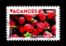 Vakantiezegels - Frambozen, Vakantie serie, circa 2009 Stock Foto's