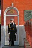 Vakt av heder kremlin moscow Arkivfoto