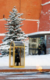 Vakt av hedern. Evigt flamma. Moscow Kremlin. Royaltyfria Bilder