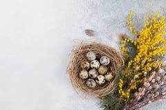 Vaktelägg i rede- och gulingblommor tillgänglig hälsning för korteaster eps mapp Arkivbilder