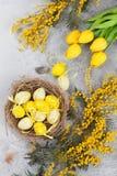 Vaktelägg i rede- och gulingblommor tillgänglig hälsning för korteaster eps mapp Royaltyfri Bild