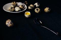 Vaktelägg på en svart texturerad bakgrund Rått brutet ägg med äggulan kort easter Slapp fokus Arkivbilder