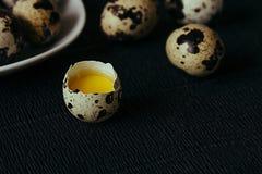 Vaktelägg på en svart texturerad bakgrund Rått brutet ägg med äggulan kort easter Slapp fokus Fotografering för Bildbyråer