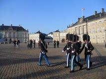 Vakter för kunglig slott royaltyfri foto