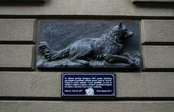 vakthund Arkivfoton