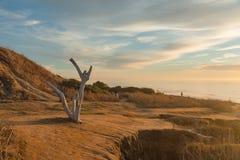 Vaktposter över solnedgångklippor Arkivfoto