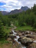 Vaktpostpasserande i den Banff nationalparken - liten vik royaltyfri bild