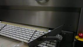 Vakuumemballage av skinka lager videofilmer