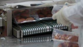 Vakuumverpacken der Würste Fleischindustrie stock footage